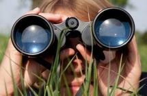 Search kompetitor cara nubie