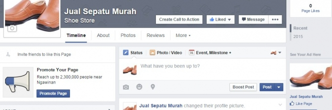 Fanpage Facebook, sudahkah anda memaksimalkannya ?